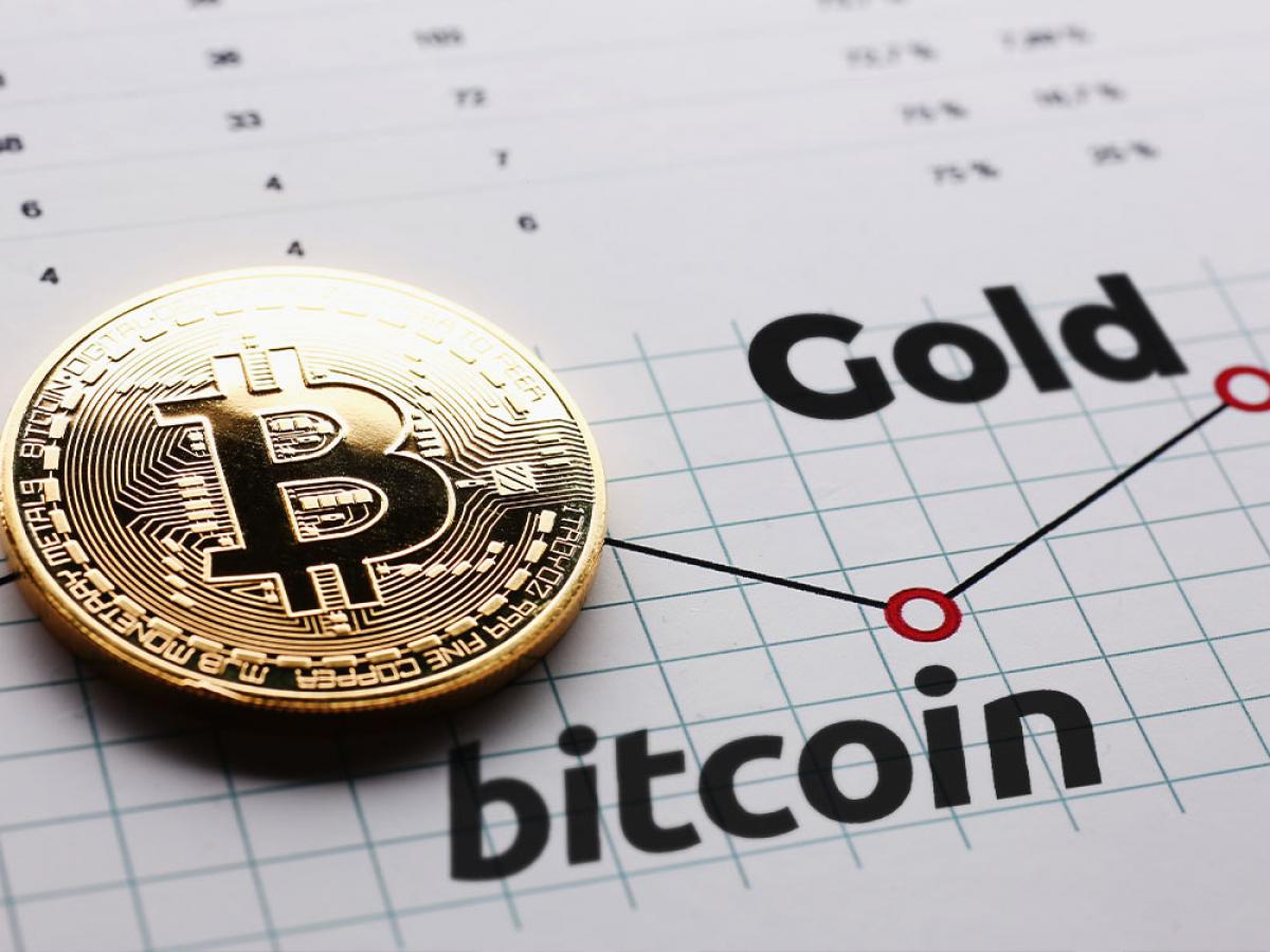 Whales gain ground amid bitcoin correction