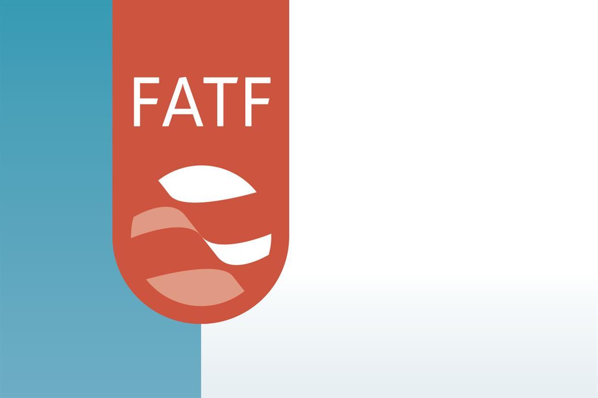 FATF calls insufficient progress
