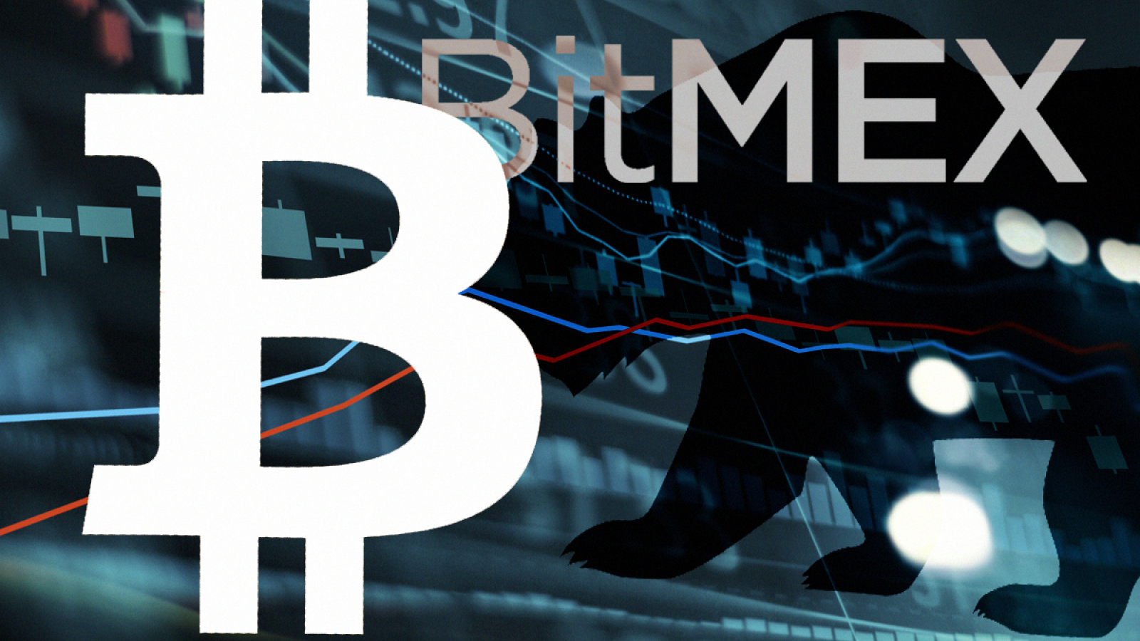 BitMEX Experience
